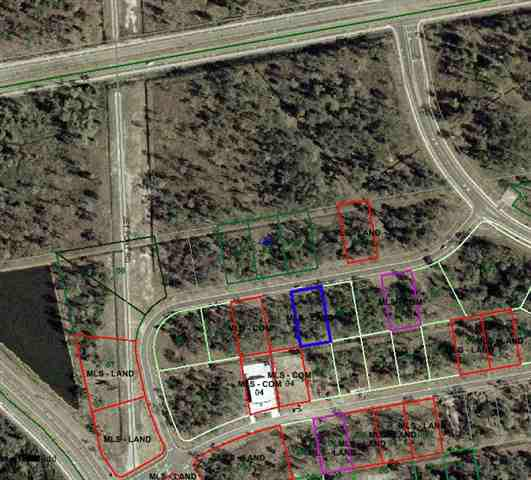 Lot 35 Dividend Loop, Myrtle Beach, SC 29577 (MLS #1210753) :: The Litchfield Company