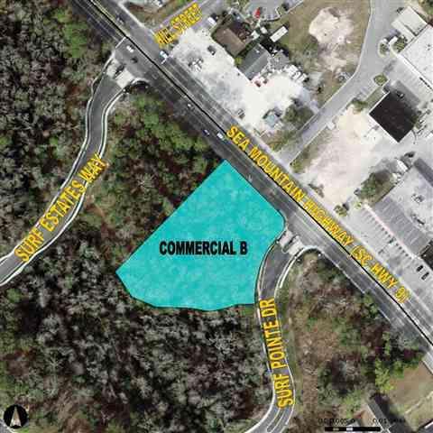 1111 Sea Mountain Highway, North Myrtle Beach, SC 29582 (MLS #1308657) :: Myrtle Beach Rental Connections