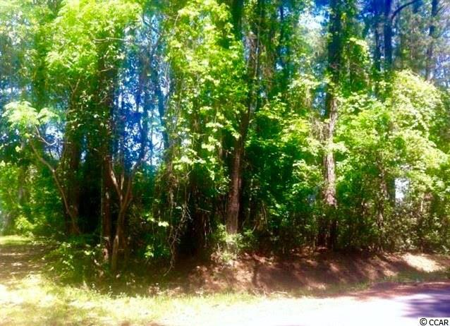Lot 13 4th Ave S, Surfside Beach, SC 29575 (MLS #1602435) :: The Litchfield Company