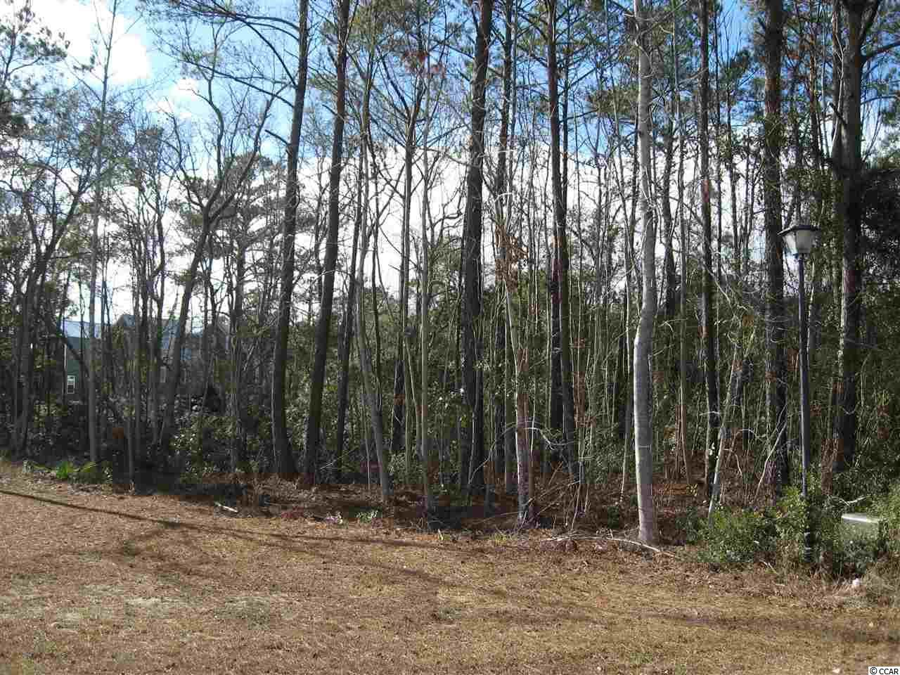Lot 145 Trace Dr. - Photo 1