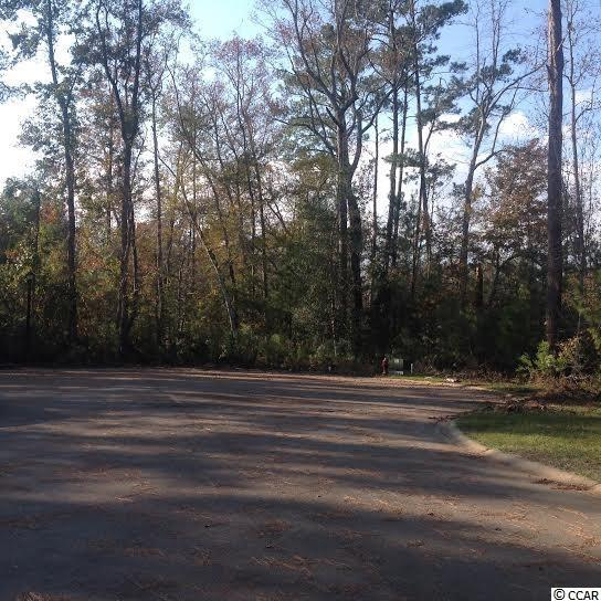 lot 29 Black Harbor Dr., Conway, SC 29526 (MLS #1702058) :: Duncan Group Properties