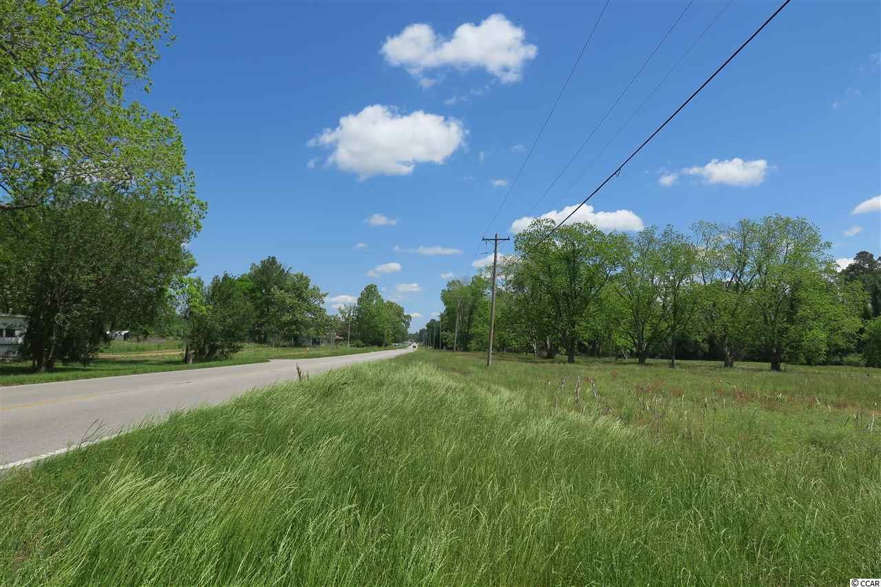 1736 Highway 905 - Photo 1