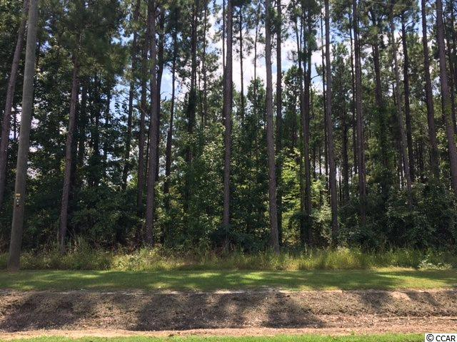 TBD Floyd Page Rd, Galivants Ferry, SC 29544 (MLS #1717999) :: The Hoffman Group