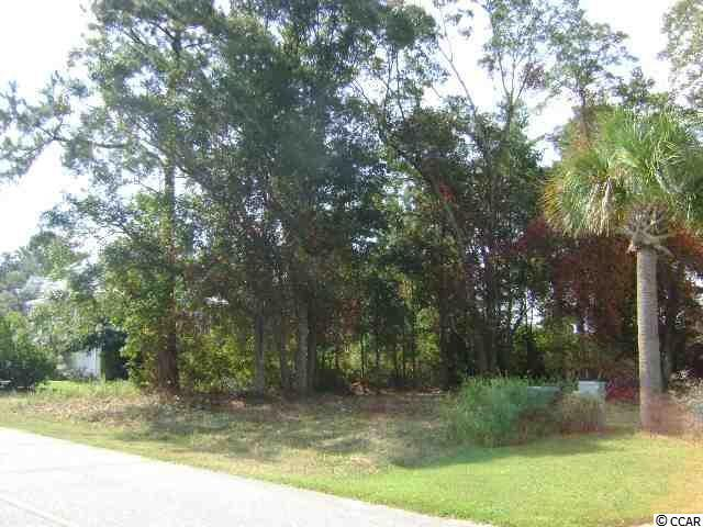 Lot 36 Cayman Loop, Pawleys Island, SC 29585 (MLS #1718378) :: James W. Smith Real Estate Co.