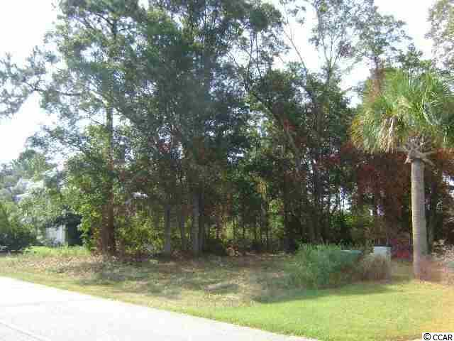 Lot 39 Cayman Loop, Pawleys Island, SC 29585 (MLS #1718379) :: James W. Smith Real Estate Co.