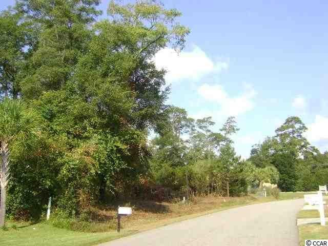 Lot 38 Cayman Loop, Pawleys Island, SC 29585 (MLS #1718382) :: James W. Smith Real Estate Co.