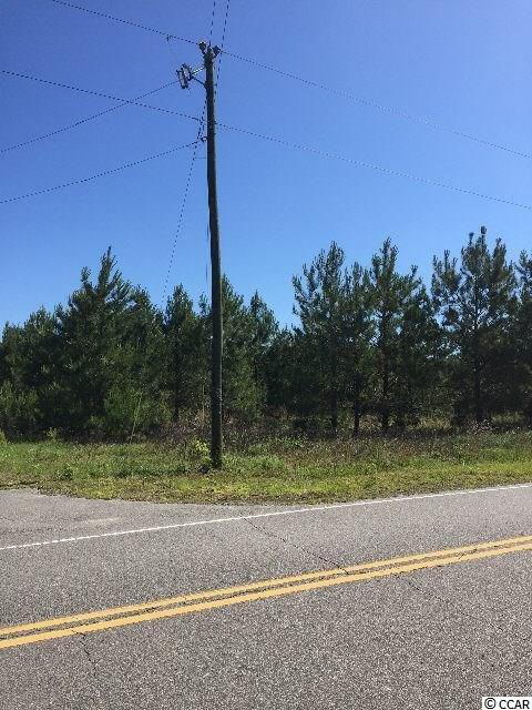 Whispering Hills Road, Loris, SC 29569 (MLS #1719480) :: The Litchfield Company