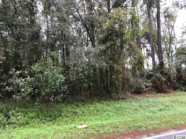 6.7 Acres Cates Bay Hwy, Conway, SC 29527 (MLS #1722045) :: The Hoffman Group