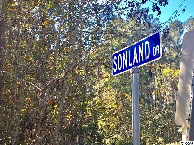 Lot 17 Ladd Dr, Myrtle Beach, SC 29588 (MLS #1724704) :: The Hoffman Group