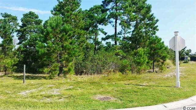 1038 Englemann Oak Dr, Myrtle Beach, SC 29579 (MLS #1800081) :: SC Beach Real Estate
