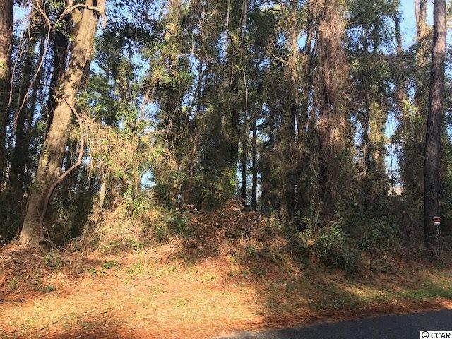 17 Riverbluff Trail, Pawleys Island, SC 29585 (MLS #1800755) :: Myrtle Beach Rental Connections