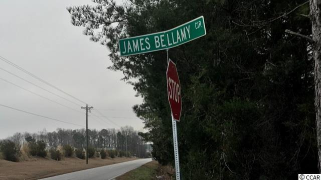 James Bellamy Circle - Photo 1