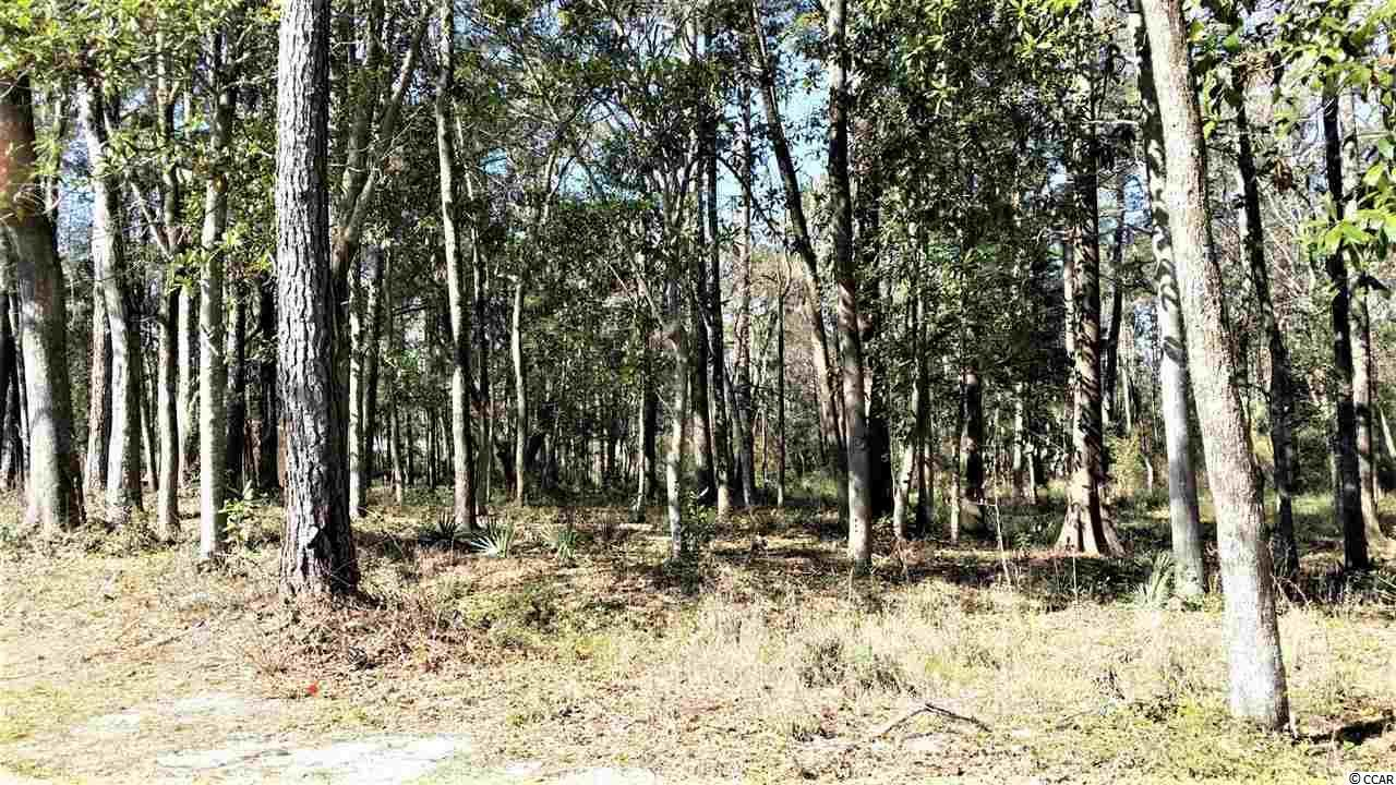 Lot 4 Block G Tuckers Rd. - Photo 1