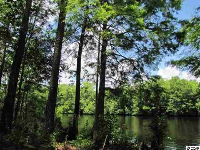 Lot 2 Meredith Ct., Myrtle Beach, SC 29588 (MLS #1804913) :: The Litchfield Company