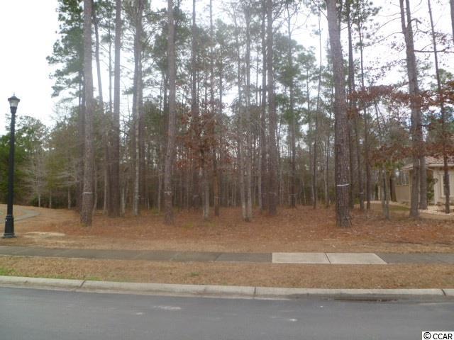 Lot 149 Chamberlin Road, Myrtle Beach, SC 29588 (MLS #1808038) :: The Litchfield Company