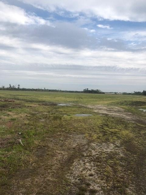 Bluff Rd, Marion, SC 29571 (MLS #1808395) :: The Litchfield Company