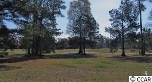 1079 N Middleton Drive Nw, Calabash, NC 28467 (MLS #1809091) :: Silver Coast Realty