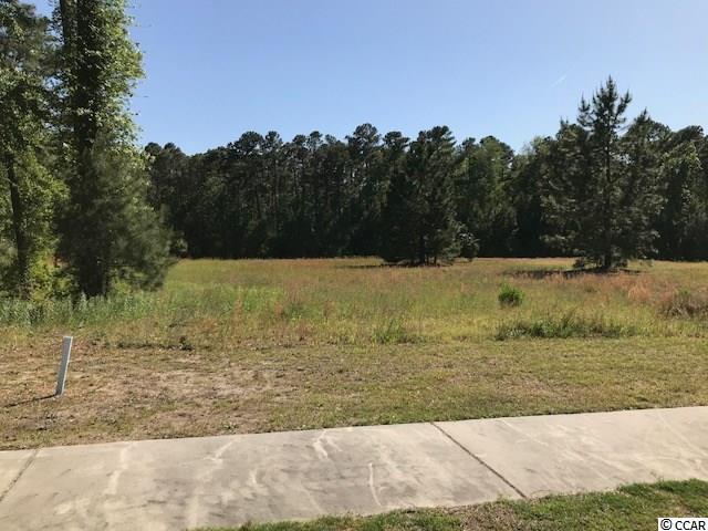 1017 Spoonbill Dr. - Photo 1