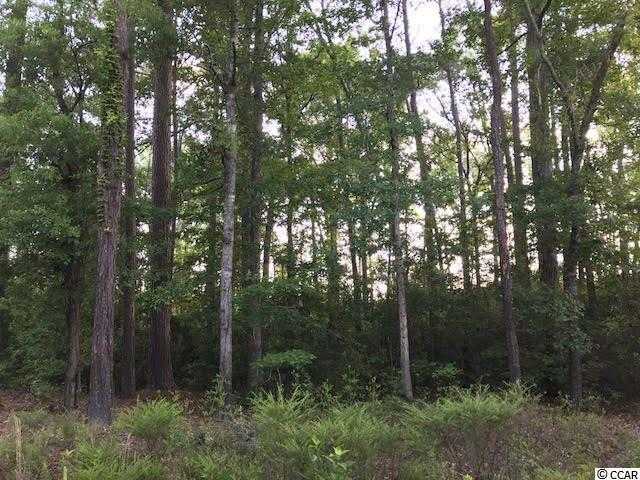 Pee Dee Hwy 24 (Int 24-135), Conway, SC 29527 (MLS #1810897) :: The HOMES and VALOR TEAM