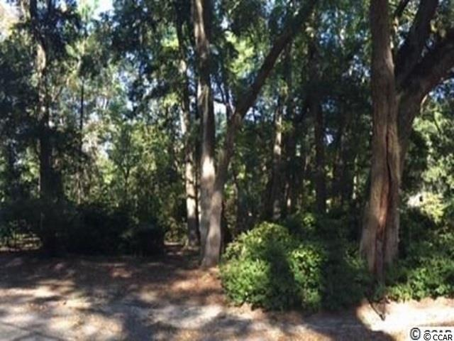 lot 90 William Screven Rd, Georgetown, SC 29440 (MLS #1812340) :: SC Beach Real Estate