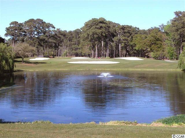 215 Swallowtail Court, Little River, SC 29566 (MLS #1812957) :: The Hoffman Group