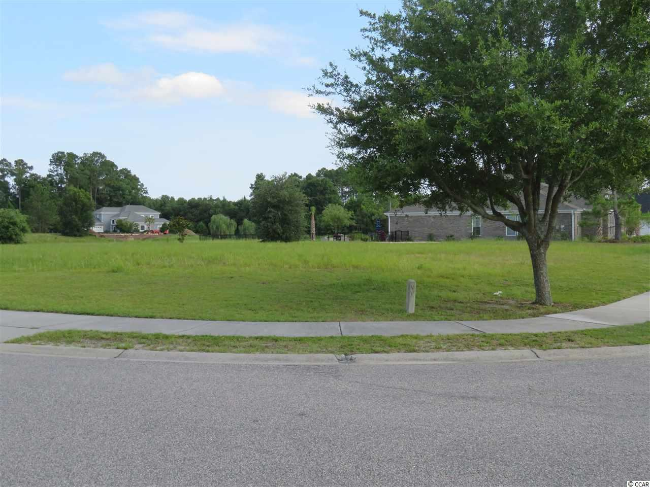 1300 Whooping Crane Dr. - Photo 1