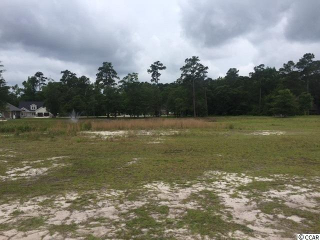 Lot 30 Swallow Tail Ct., Little River, SC 29566 (MLS #1814533) :: The Litchfield Company