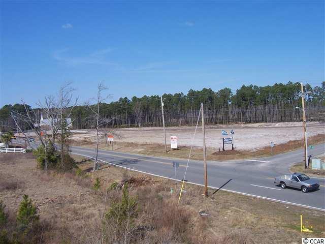 1250 Hwy. 90, Little River, SC 29566 (MLS #1817420) :: SC Beach Real Estate
