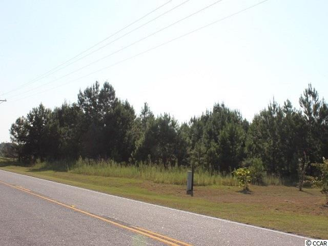 Lot 3 Highway 45 - Photo 1
