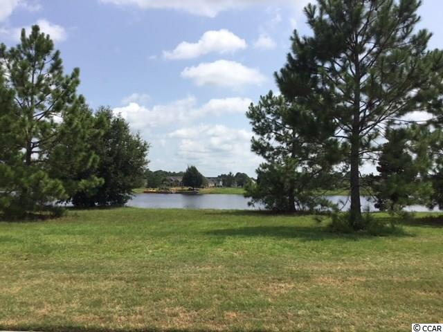 1012 Dowitcher Dr., Conway, SC 29526 (MLS #1818174) :: The Litchfield Company