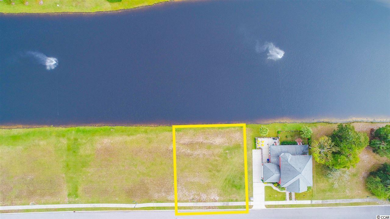 1011 Tarpon Pond Rd. - Photo 1
