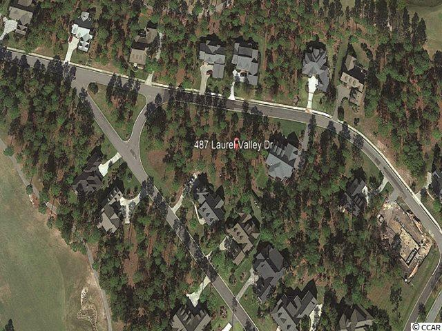 487 Laurel Valley Dr., Shallotte, NC 28470 (MLS #1823659) :: The Litchfield Company