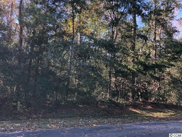 4524 Live Oak Dr., Little River, SC 29566 (MLS #1825220) :: The Hoffman Group