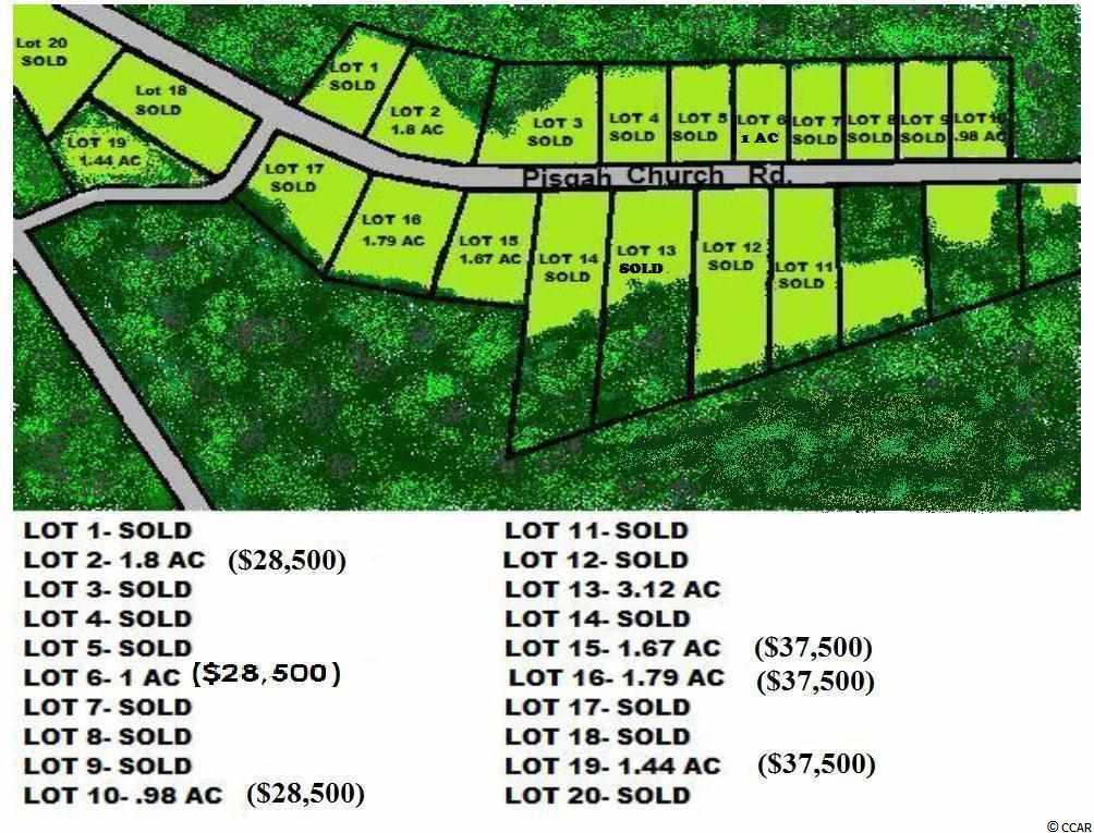 TBD Lot 19 Pisgah Church Rd. - Photo 1