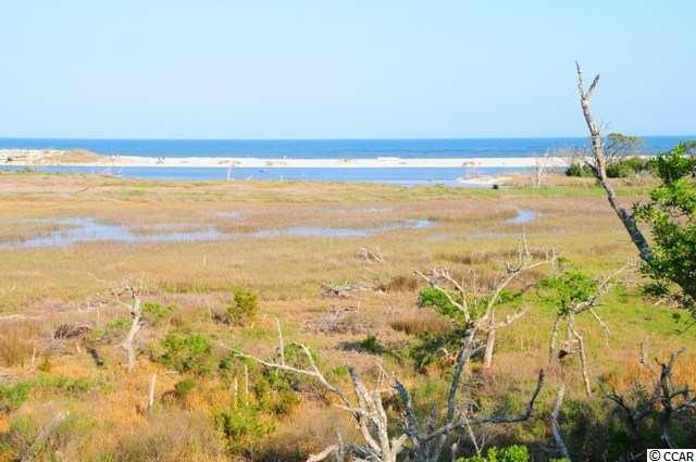 3160 Vanderbilt Blvd., Pawleys Island, SC 29585 (MLS #1900012) :: The Hoffman Group