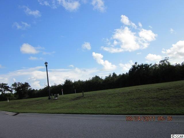 Lot 155 Tarpon Pond Rd., North Myrtle Beach, SC 29582 (MLS #1900469) :: The Hoffman Group