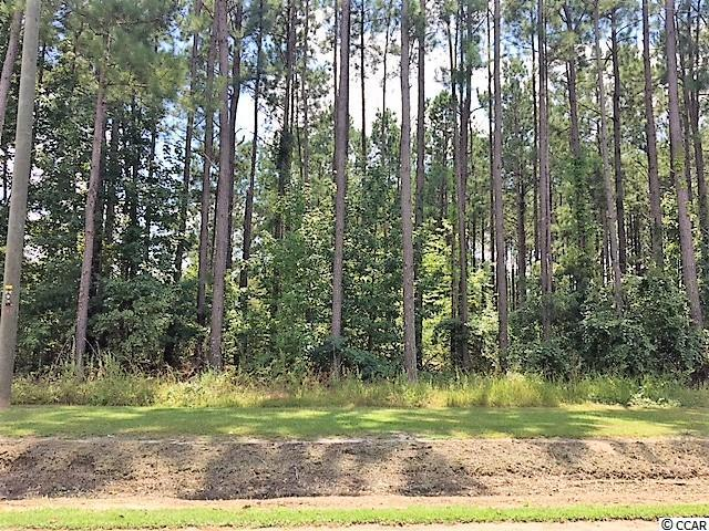 TBD Floyd Page Rd., Galivants Ferry, SC 29544 (MLS #1900620) :: The Litchfield Company