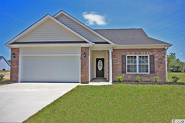 167 Palm Terrace Loop, Conway, SC 29526 (MLS #1900784) :: Right Find Homes