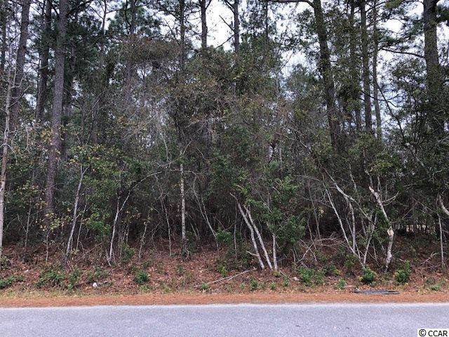 Lot 36 George Washington Trail, Georgetown, SC 29440 (MLS #1902158) :: Armand R Roux | Real Estate Buy The Coast LLC