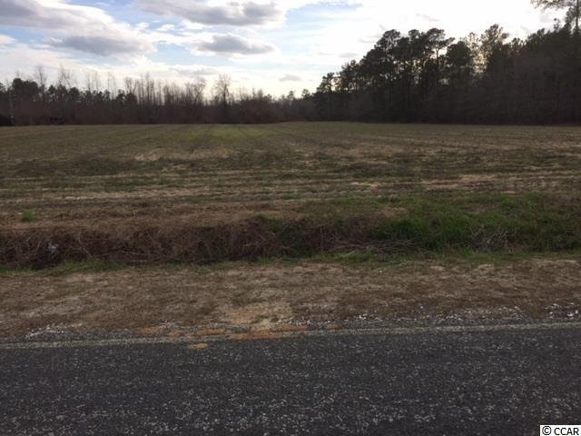 4744 Highway 308, Galivants Ferry, SC 29544 (MLS #1902921) :: The Hoffman Group