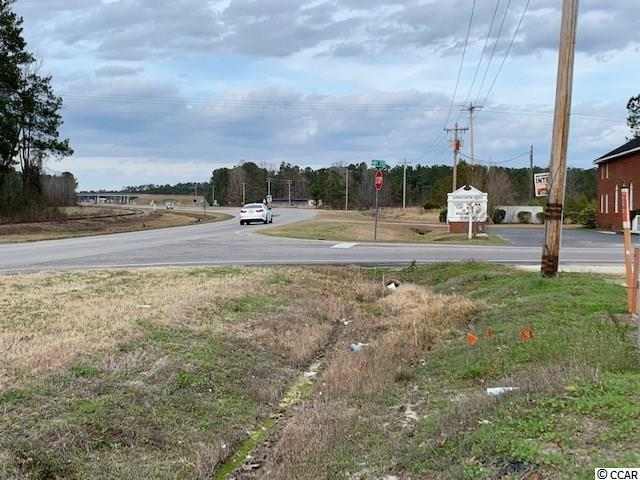 TBD Highway 701 North - Photo 1
