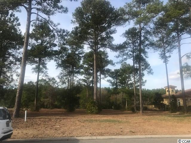 8324 Leone Circle, Myrtle Beach, SC 29579 (MLS #1903416) :: The Hoffman Group