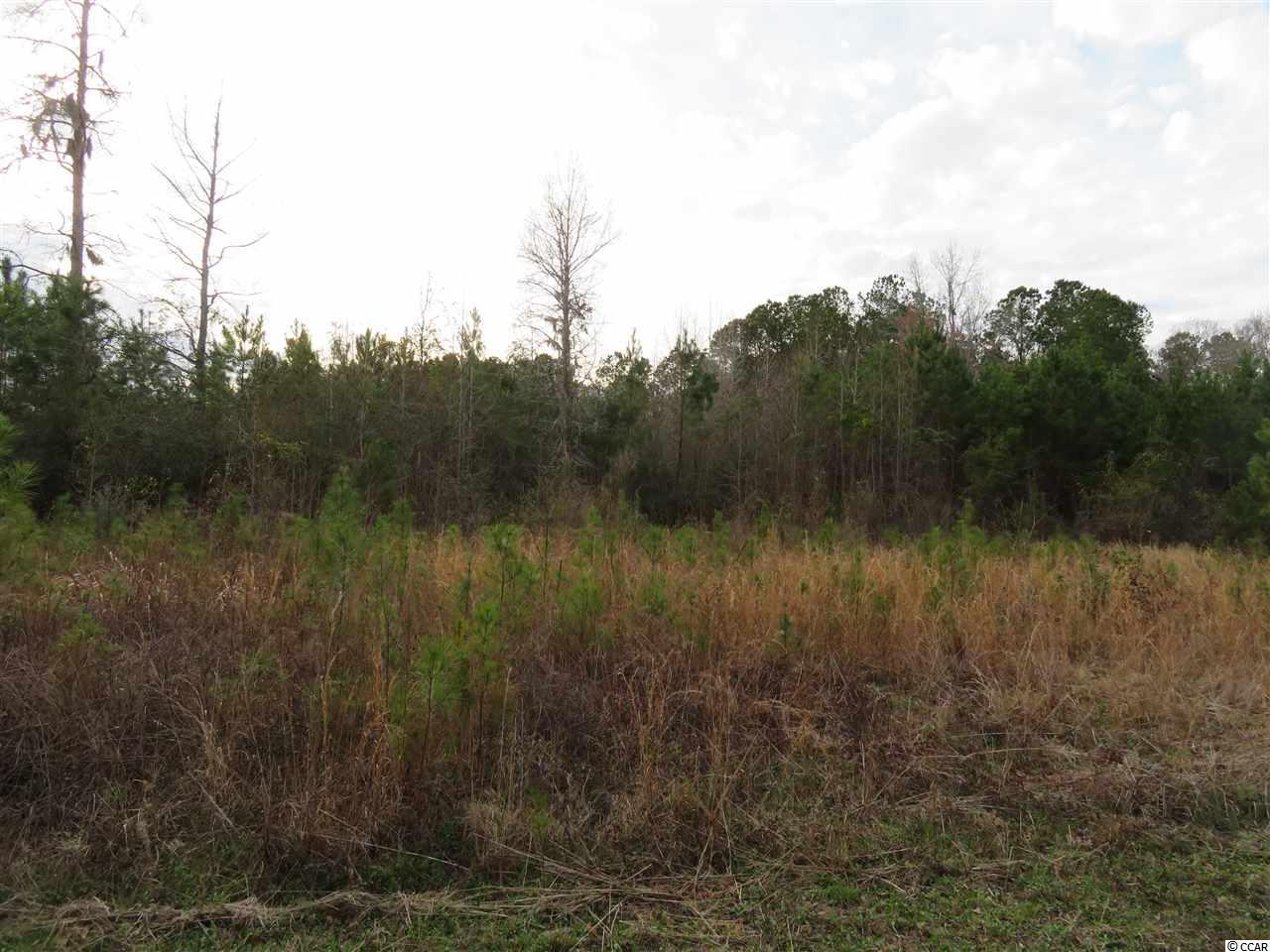 Tract 10 Mishoe Rd. - Photo 1