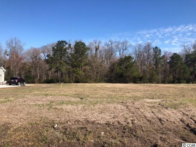 634 Sunny Pond Ln., Aynor, SC 29511 (MLS #1905494) :: The Hoffman Group