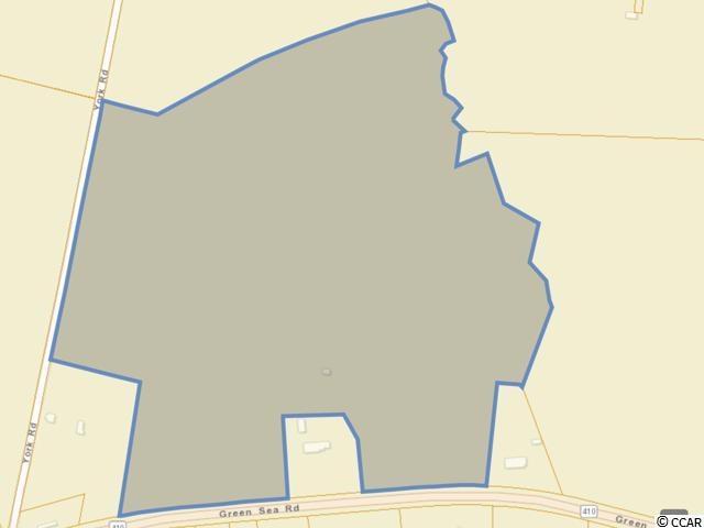 2470 Green Sea Rd., Green Sea, SC 29545 (MLS #1906051) :: The Hoffman Group