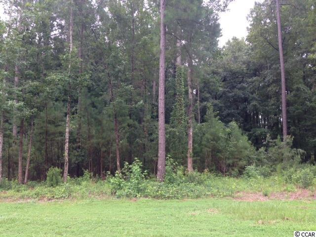 Lot 41 Black Water Cove, Conway, SC 29526 (MLS #1906666) :: Right Find Homes