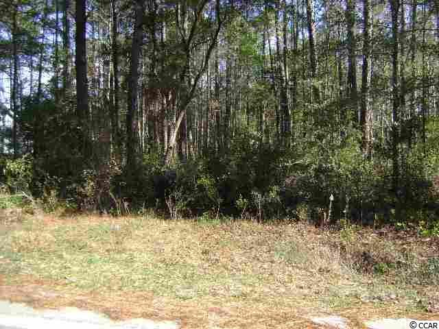 Lot 5 Section Hagley Dr., Pawleys Island, SC 29585 (MLS #1908580) :: The Hoffman Group
