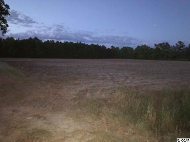 TBD Pearl Rd., Galivants Ferry, SC 29544 (MLS #1910779) :: The Hoffman Group