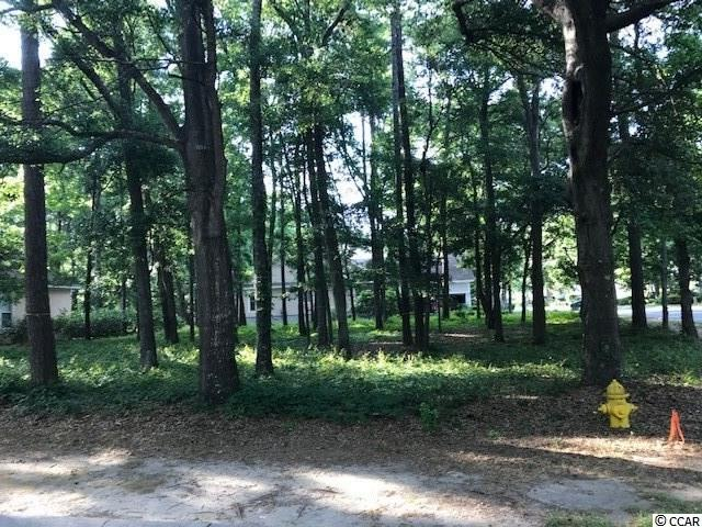 5019 Bucks Bluff Dr., North Myrtle Beach, SC 29582 (MLS #1911134) :: Right Find Homes