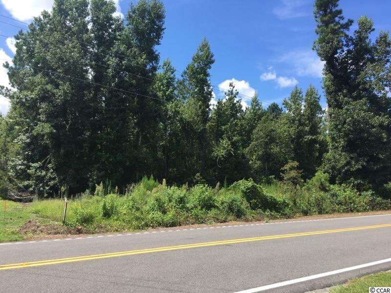 1.38 Acs Highway 19 - Photo 1